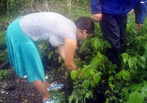 costa-rica-environment-conservation-1