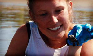 turtle conservation volunteer in costa rica