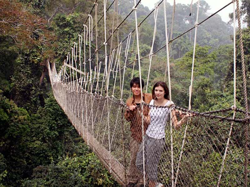 The Kakum National Park Canopy Walk is one of the top things to do in Ghana